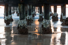 Pier of Coffs Harbour Australia sunrise Stock Photography