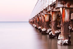 Pier at Dawn. Pier in dawn light, over calm ocean.  A tranquil scene, with weathered old pylons, rusted bolts and barnacles Stock Images