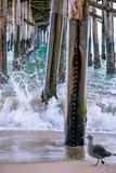 Pier Dreams Lizenzfreies Stockbild