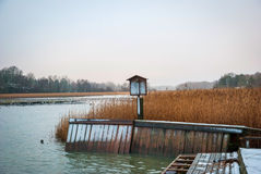 Pier and dry grass by the fjord in winter Royalty Free Stock Photo