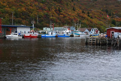 Pier for fishing boats (ships)  Petty Harbor, Newfoundland, Canada Royalty Free Stock Photos