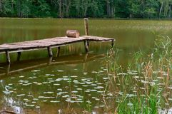 Pier for fishing, marshland, reflection of trees in the pond, a picturesque pond in the forest. Pier for fishing, reflection of trees in the pond, a picturesque stock photos