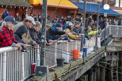 Pier fishing in Seattle Waterfront royalty free stock photo