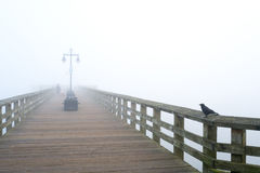 Rocky Point Park pier. Pier at Rocky Point Park in Port Moody, on a foggy day with bird and dog stock photo