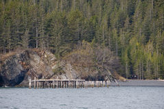 Pier and forested shoreline Stock Photography