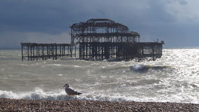 The Pier with Gull. A seagull patrols the beach for its friends Stock Photo
