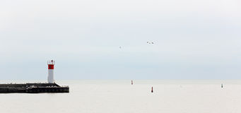 Pier with gulls jutting into a quiet Lake Erie. On a grey day Royalty Free Stock Image