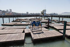 Pier 39 Stock Image
