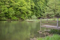 Pier innerhalb eines kleinen Sees Stockbild