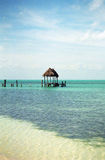 Pier at Isla Contoy Royalty Free Stock Photos