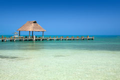 Pier on the Isla Contoy in Mexico Royalty Free Stock Images
