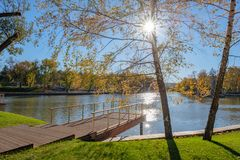 Pier on the lake. Beautiful autumn sunny day, the sun`s beams shine through the foliage of the tree royalty free stock photos