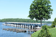 Pier in a lake Royalty Free Stock Image
