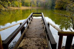 A pier on the lake of the Umbria Forest royalty free stock image