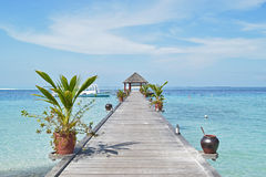Pier leading to passenger boats at maldive Stock Image