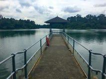 Pier an Macritchie-Reservoir Singapur Stockbilder