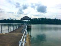 Pier an Macritchie-Reservoir Singapur Lizenzfreie Stockfotos