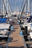 Pier with many parking yachts in calm marina water on bright summer day royalty free stock image