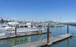 Pier 39 Marina with yachts and boats docking in San Francisco,CA. Sunny Day View of Pier 39 Marina with yachts and boats docking in San Francisco,CA stock image