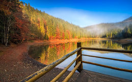 Pier on mountain Lake near the forest Royalty Free Stock Images