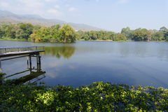 Pier, mountain and the pond in the park Royalty Free Stock Photography