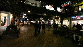 Pier 39 nigthlife stock video footage