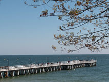 Pier over the sea in summer Stock Image