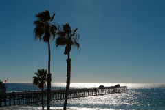 Pier and palm trees Stock Image