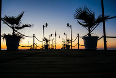 Pier with palm trees in colourful sunrise Stock Image