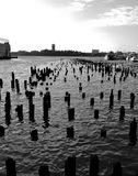 Pier. Piles of a pier in new york Stock Photos