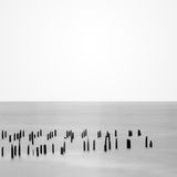 Pier pilings Royalty Free Stock Photo