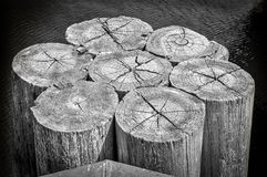 Pier Pilings stockbilder