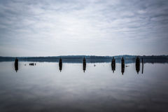 Pier pilings in the Potomac River, in Alexandria, Virginia. Royalty Free Stock Photo