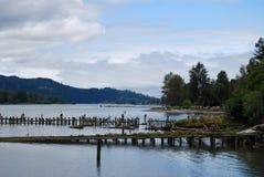 Pier Pilings putréfié à la frontière du fleuve Columbia Orégon-Washington Images libres de droits