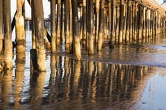 Pier pilings at sunset Royalty Free Stock Photo