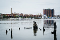 Pier pilings and waterfront buildings in Canton, Baltimore, Mary Stock Photo