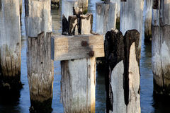 Pier post close up Royalty Free Stock Photography