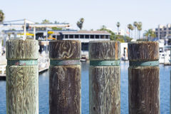 Pier pylons on a harbor boardwalk Stock Images