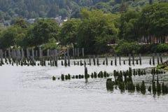 Pier Remnants idoso Fotos de Stock Royalty Free