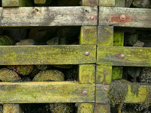 Pier retaining wall at low tide Stock Images