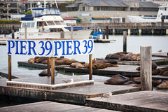 Pier 39 in San Francisco Royalty Free Stock Image