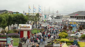 Pier 39 in San Francisco, California stock video footage