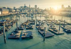 Pier 39,San Francisco Stock Images