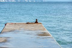 pier in the sea royalty free stock photography