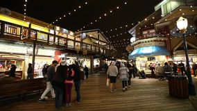 Pier 39 shopping center stock video