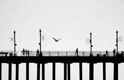 Pier Silhouette. A pier with four lampposts, is seen in silhouette as people walk  on it, and a seagull flying near the center Stock Photos
