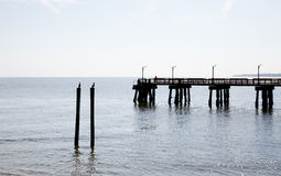 Pier in Silhouette. A pier in silhouette with fishermen and seabirds on pilings Royalty Free Stock Image