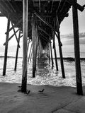 The Pier stock image
