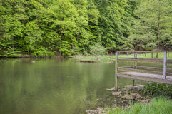 Pier within a small lake Stock Image