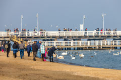 Pier in Sopot Stockbild